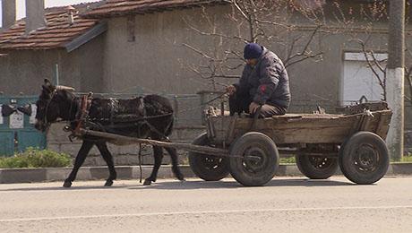 Ruckzuck nach Bulgarien