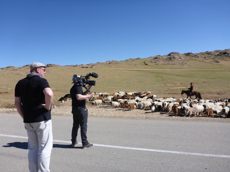 Kaschmir-Nomaden und ihre Ziegenherden